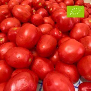 vendita pomodori da conserva biologici langhe cuneo azienda sativus